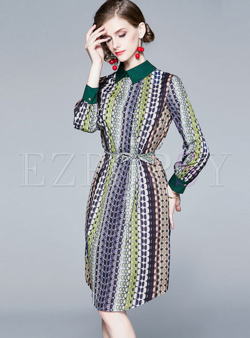 Turn Down Collar Long Sleeve Dot A Line Dress