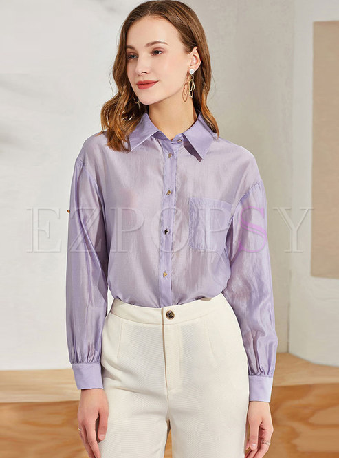 Casual Turn-down Collar Transparent Blouse