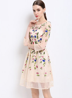 Mesh Embroidered Slim Three Quarters Sleeve Skater Dress With Underskirt