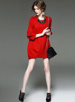 Brief Pure Color Long Sleeve Shift Dress