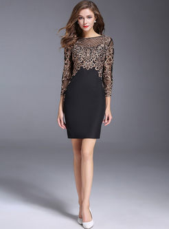 Sexy Lace Embroidered Bodycon Dress