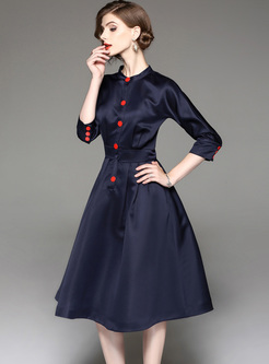 Brief Stand Collar Buttoned A-line Dress