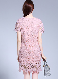Brief Lace Short Sleeve Shift Dress