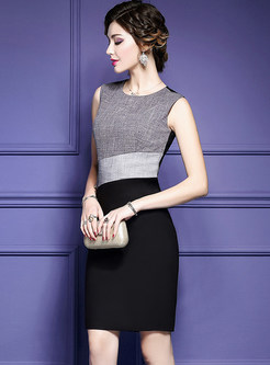 Brief Contrast Color Sleeveless Bodycon Dress