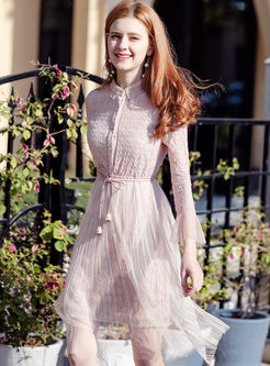 Sweet Pink Lapel Lace Mesh Patched A-line Dress