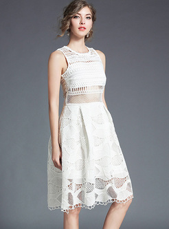 Brief Lace Sleeveless Slim A-line Dress
