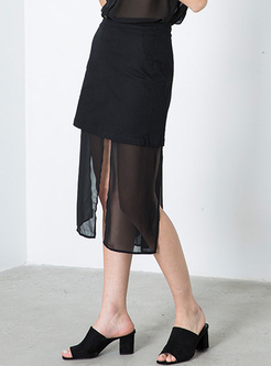 Black Perspective Mesh Skirt