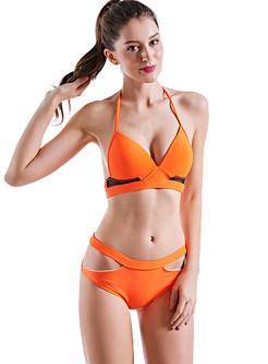 Sexy Mesh Hollow Tankini Bikini