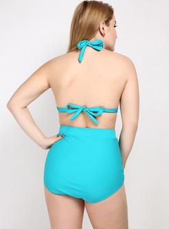 Halter Neck Backless Bowknot Tied Bikini