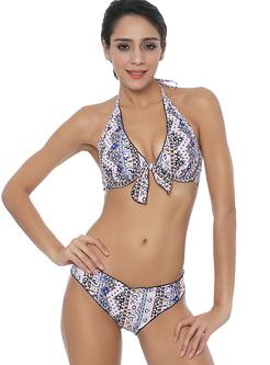 Fashion Print Two Piece Bikini