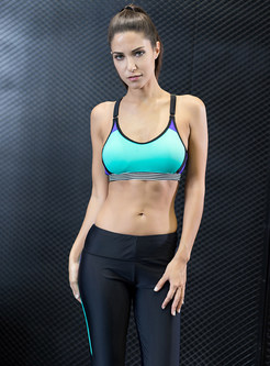 Hit Color Sport Bra & Sheath Yoga Pants
