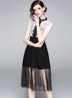 Lace Stand Collar Gauze Splicing Dress