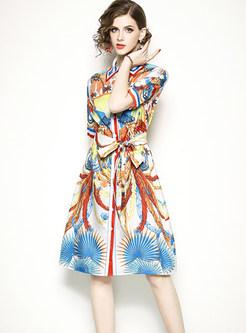 Stylish Turn-down Collar Multi-color print Skater Dress