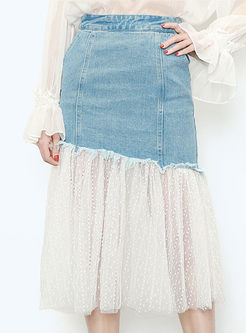 Chic Mesh Splicing Slim Denim Dress