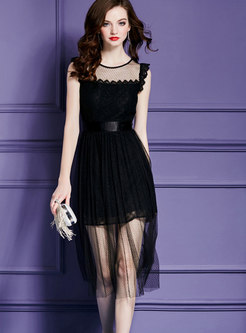 Sexy Black Sleeveless High Waist See-through Look Dress
