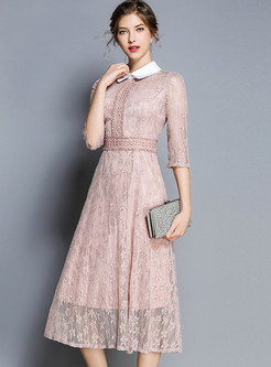 Turn Down Collar Half Sleeve Hollow Out Lace Dress
