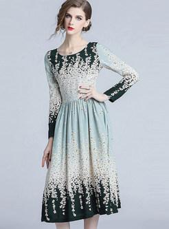 Long Sleeve Floral Gradient Color Waist Dress