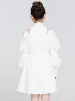 Chic Off Shoulder Puff Sleeve A-line Dress