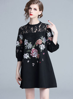 Lantern Sleeve Embroidered Lace-paneled Skater Dress