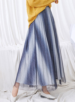 High Waist Pleated Mesh Long A Line Skirt