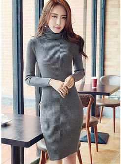 Casual Turtle Neck Long Sleeve Skinny Knitted Dress