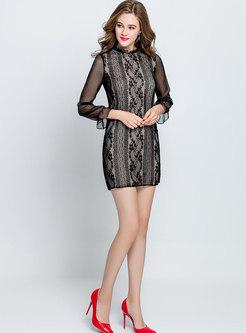 Sexy Splicing Lantern Sleeve Sheath Lace Dress