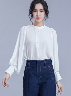 Brief Solid Color Lantern Sleeve Pullover Blouse