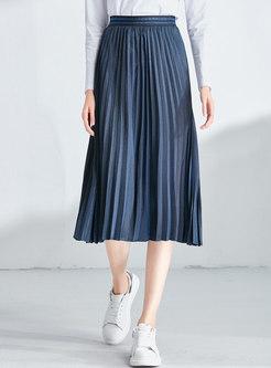 Elastic Waist Pleated A Line Skirt
