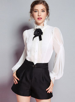 Stand Collar Lantern Sleeve Single-breasted Blouse
