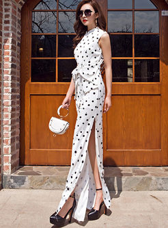Stylish Stand Collar Polka Dot Maxi Dress