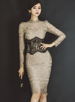 Lace Long Sleeve Transparent Bodycon Dress