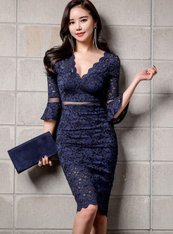 Lace Patchwork V-neck Perspective Bodycon Dress