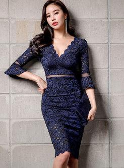 Sexy Lace Splicing V-neck Perspective Sheath Dress