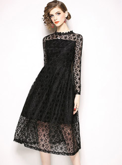 Sexy Lace Stand Collar Perspective A Line Dress