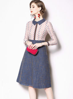 Color-blocked Long Sleeve A Line Lace Dress