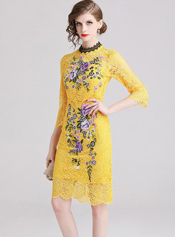 Sexy See-through Lace Embroidered Sheath Dress