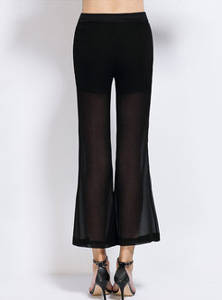 Brief Solid Color Slit Perspective Flare Pants