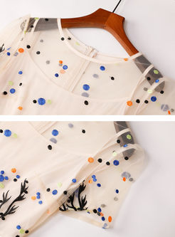 Brief White O-neck Embroidered Skater Dress