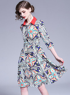 Stylish Print Lapel Gathered Waist Skater Dress