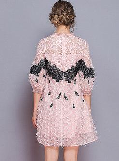 Lace Embroidered Lantern Sleeve Loose Mini Dress