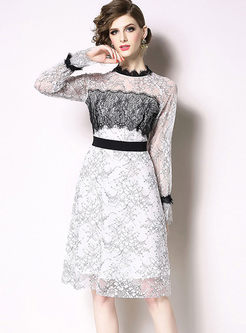 Sweet Standing Collar Lace Skater Dress