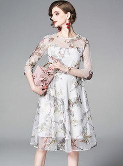 Chic Mesh Print High Waist A Line Dress