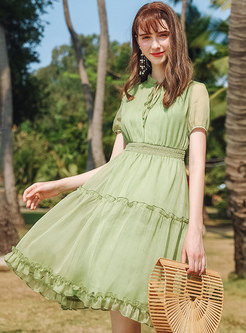Chiffon Stand Collar Tied Pleated Skater Dress
