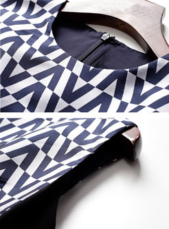 Brief Print O-neck Sleeveless Skater Dress
