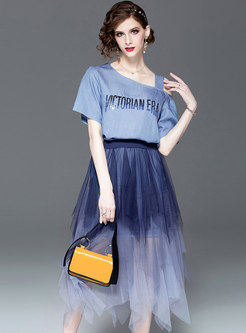 Stylish Off Shoulder T-shirt & Asymmetric Mesh Skirt