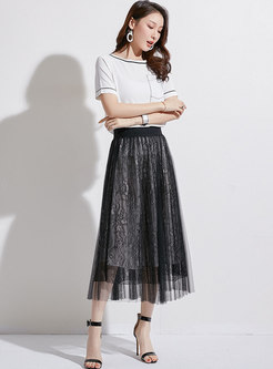 Stylish Mesh High Waist Pleated Skirt
