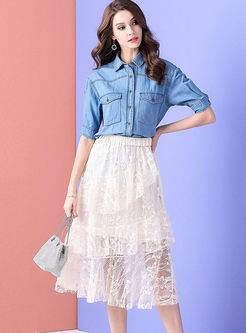 Lapel Half Sleeve Denim Top & Chic Mesh Skirt