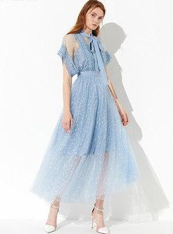 Stylish Mesh Embroidered High Waist Skirt