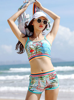 Fashion V-neck Print Beach Cover-up Swimsuit