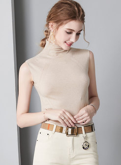 Turtle Neck Striped All-matched Sheath Sweater